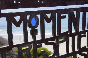 Gate at Laguna Beach